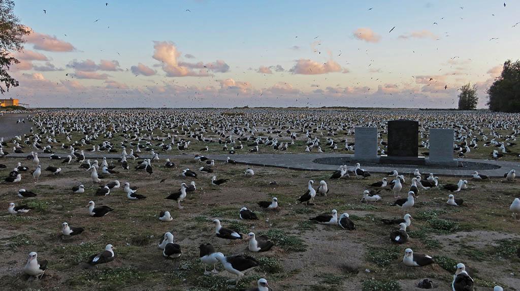 Albatross and Midway Memorial
